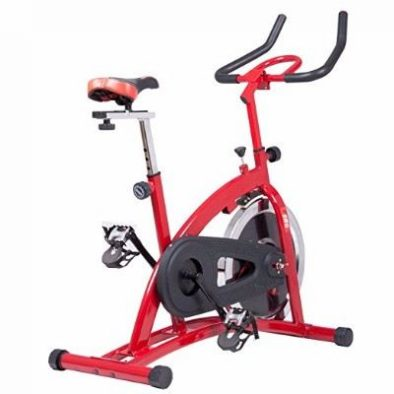 Body Champ ERG1161 Pro Cycle Trainer Review