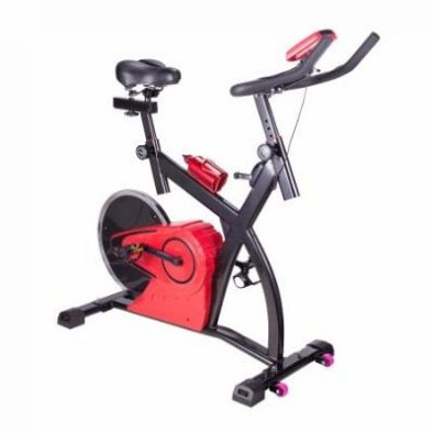 Pinty Upright Stationary Exercise Bike with LCD Screen Review