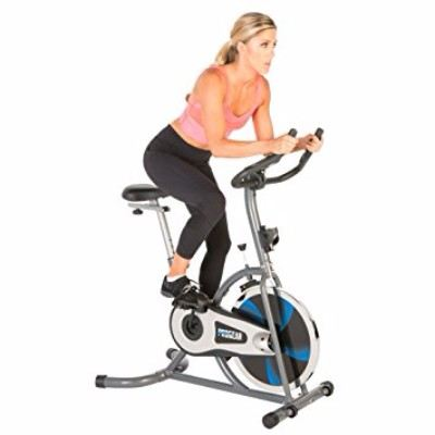 ProGear 100S Exercise Bike/Indoor Training Cycle Review