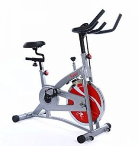 Sunny Health & Fitness SF-B1421 Bell Drive Indoor Cycling Bike Review
