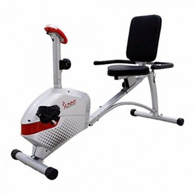 Sunny Health & Fitness SF-RB4417 Gray Magnetic Recumbent Bike Review