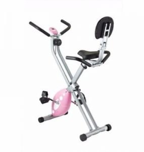 Sunny Health and Fitness Folding Recumbent Bike Review
