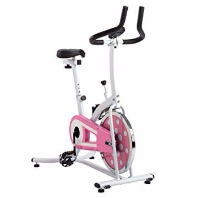 Sunny Health and Fitness Pink Indoor Cycling Bike Review