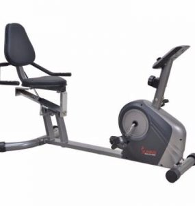 Sunny Health and Fitness SF-RB4602 Recumbent Bike Review